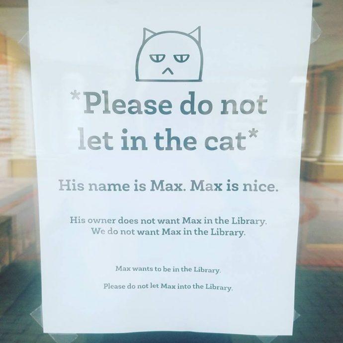 Двойная жизнь кота Макса... Этот проказник успел наделать шуму на всю страну! Смотрите сами : ) рис 7