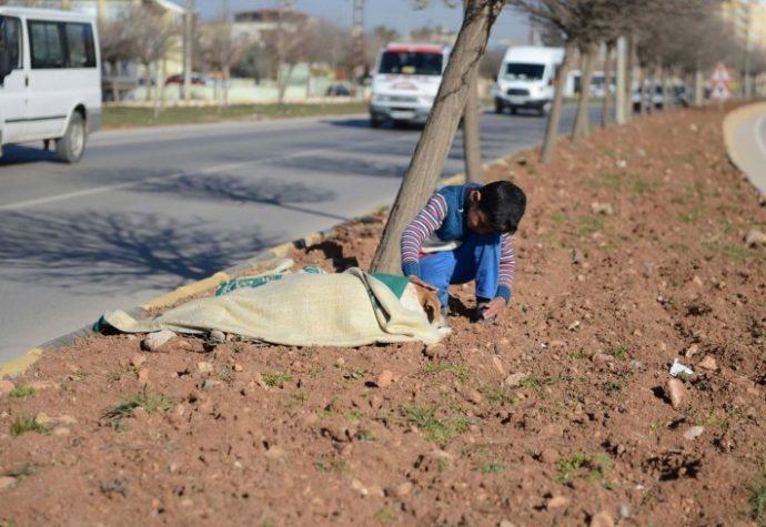 02-refugee-comforts-stray-dog-710x489