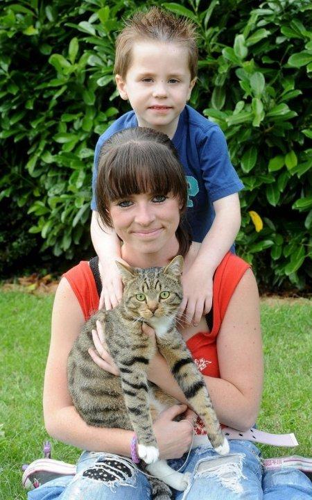 Их было трое, он был один... но с котом! Самый храбрый питомец защитил своего 5-летнего хозяина от нападавших!