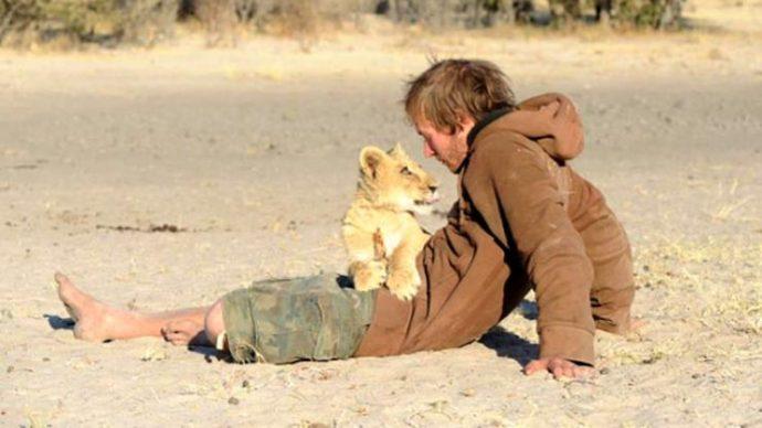 Маленькую львицу бросил прайд, но спасли люди! И вот снова ей пришло время остаться одной... рис 6