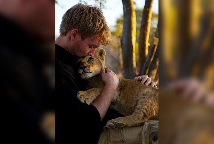 Маленькую львицу бросил прайд, но спасли люди! И вот снова ей пришло время остаться одной... рис 7