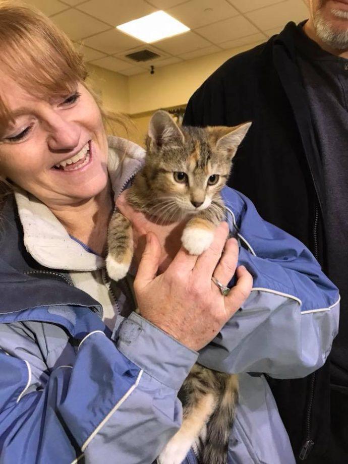 """Взяла - и понесла! Женщине """"очень захотелось"""" котёнка, поэтому она украла его прямо из волонтёрского центра! рис 7"""