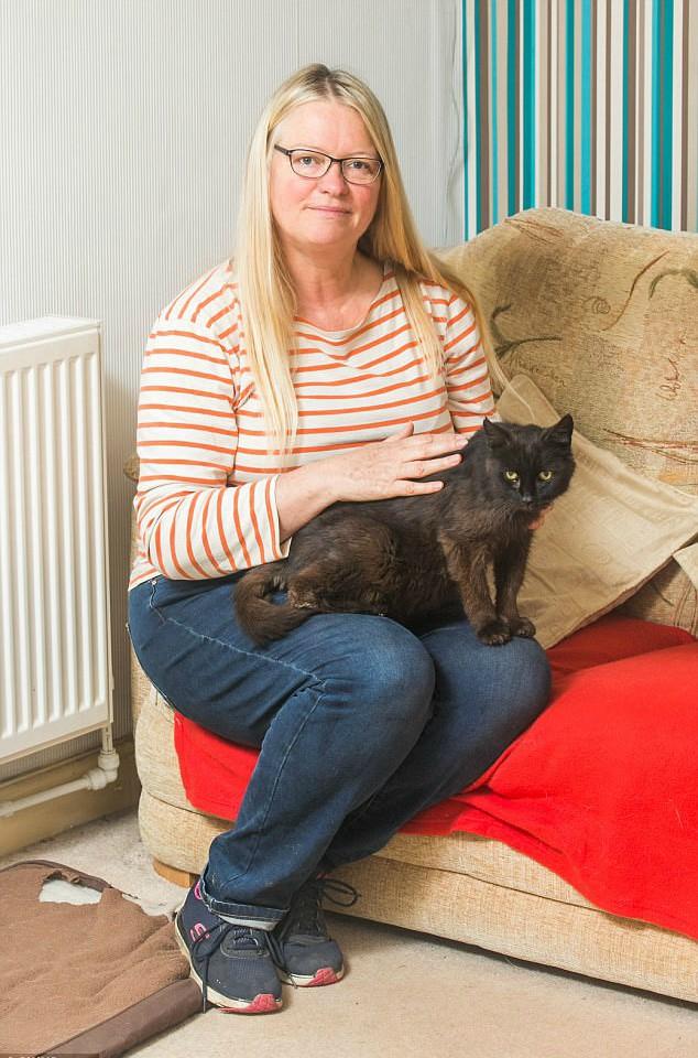 Он шёл домой 15 лет! Путь чёрного кота, которому всё-таки однажды повезло... рис 3
