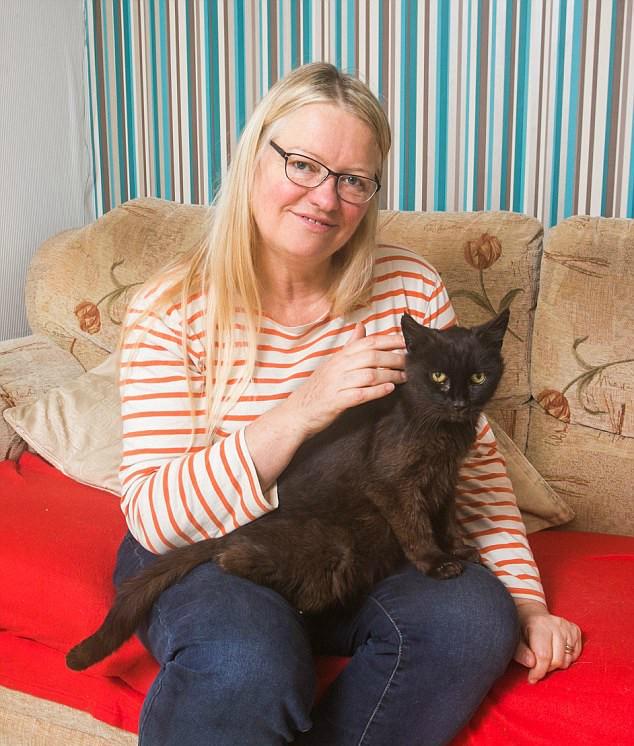 Он шёл домой 15 лет! Путь чёрного кота, которому всё-таки однажды повезло... рис 4