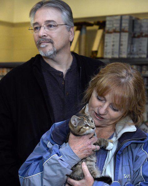 """Взяла - и понесла! Женщине """"очень захотелось"""" котёнка, поэтому она украла его прямо из волонтёрского центра! рис 6"""