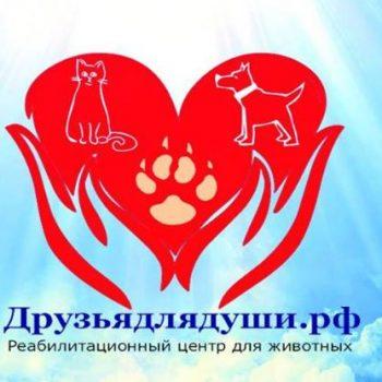 Приют - реабилитационный центр для животных