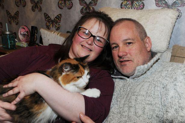 Побитая кошка еле приползла домой под Новый год. Лечить её было не на что... Она ждала чуда! рис 2