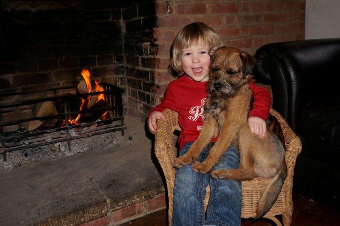 """""""Нашёлся?!"""" Безутешному мальчику вернули украденного щенка, вот только он ли это? рис 7"""