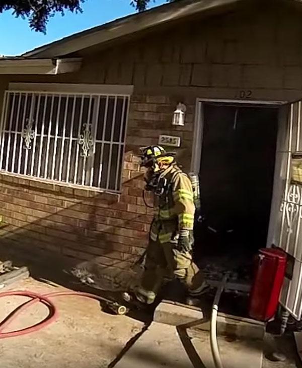 Пожар едва не унес жизнь маленького котенка... Как же пожарные сумели спасти такого кроху?