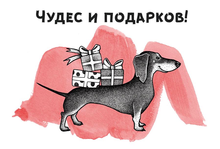 Открытки в помощь бездомным животным! Необычная акция от WikiPet