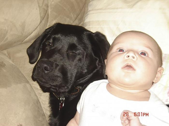 Её отговаривали все! Но эта мать всё равно подарила щенка дочке - и вот что из этого вышло!