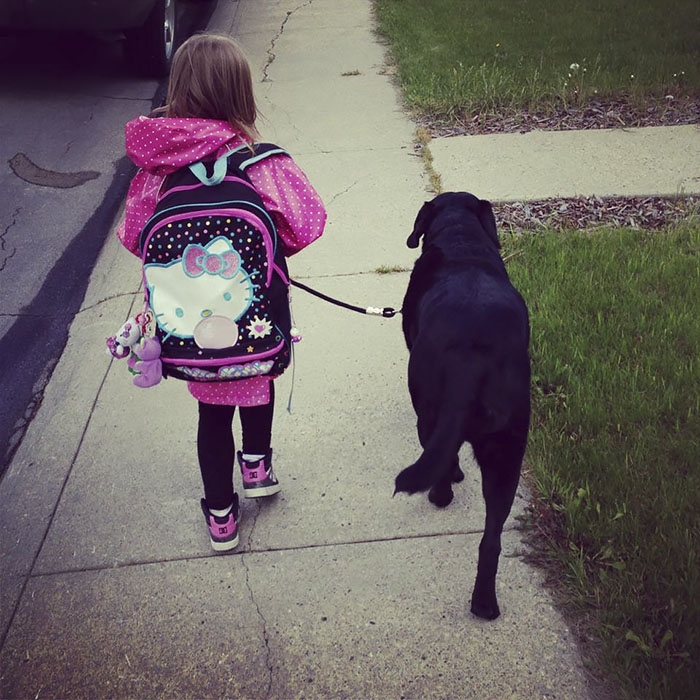 Её отговаривали все! Но эта мать всё равно подарила щенка дочке - и вот что из этого вышло! рис 6