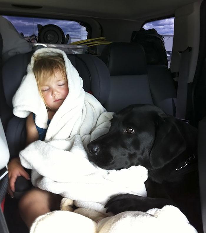 Её отговаривали все! Но эта мать всё равно подарила щенка дочке - и вот что из этого вышло! рис 3