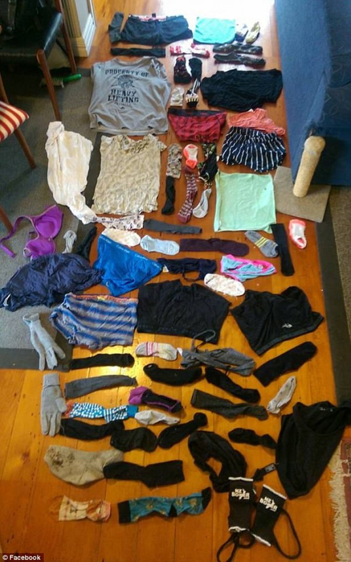 48c6bd7b00000578-5337343-a_bra_was_among_the_clothing_stolen_ed_williams_had_to_explain_t-a-14_1517442992521_03195600