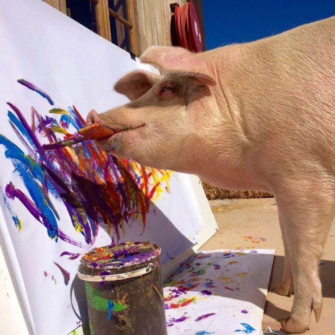 Pigcasso-painting-pig-750x750