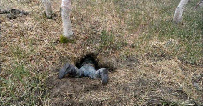 А вы знаете, как выглядит медвежья берлога ИЗНУТРИ? Охотник нашёл лаз и решил проверить... рис 2