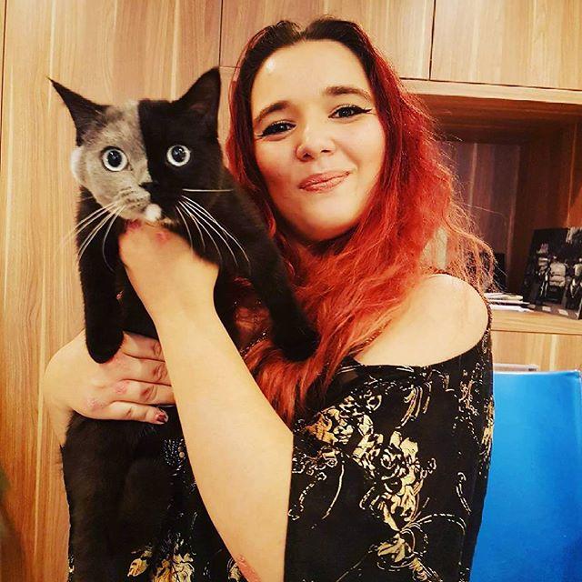 """""""Двуликий"""" кот Нарния: невероятно редкое сочетание серого и чёрного! Эта мордочка навсегда врезается в память..."""