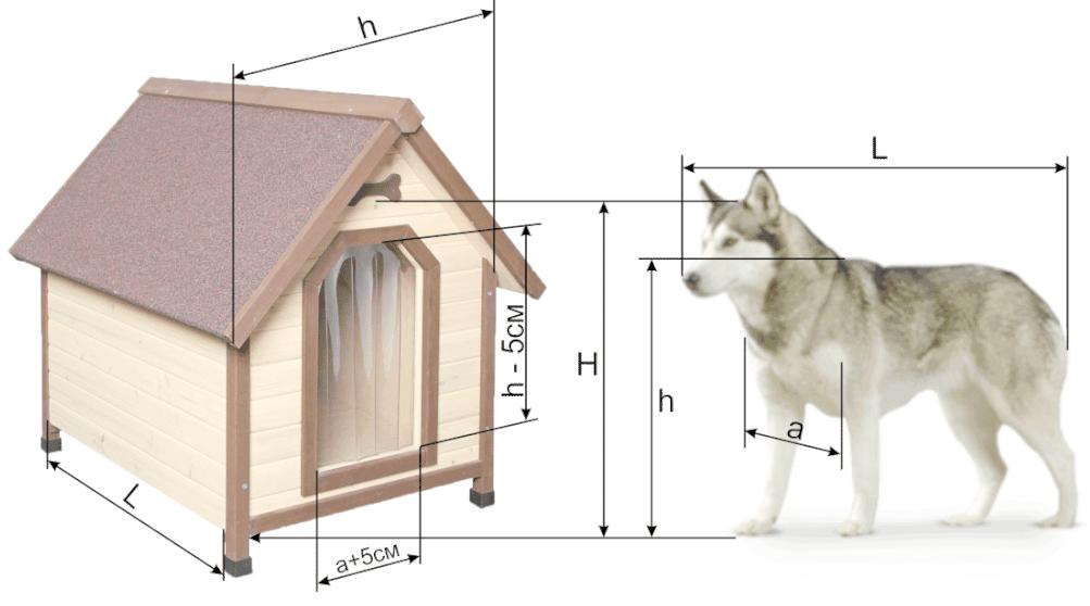 конура для собаки своими руками чертежи и размеры фото преимущество азовского побережья