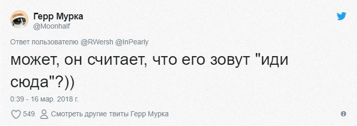 bez-nazvaniya-5-6 (1)
