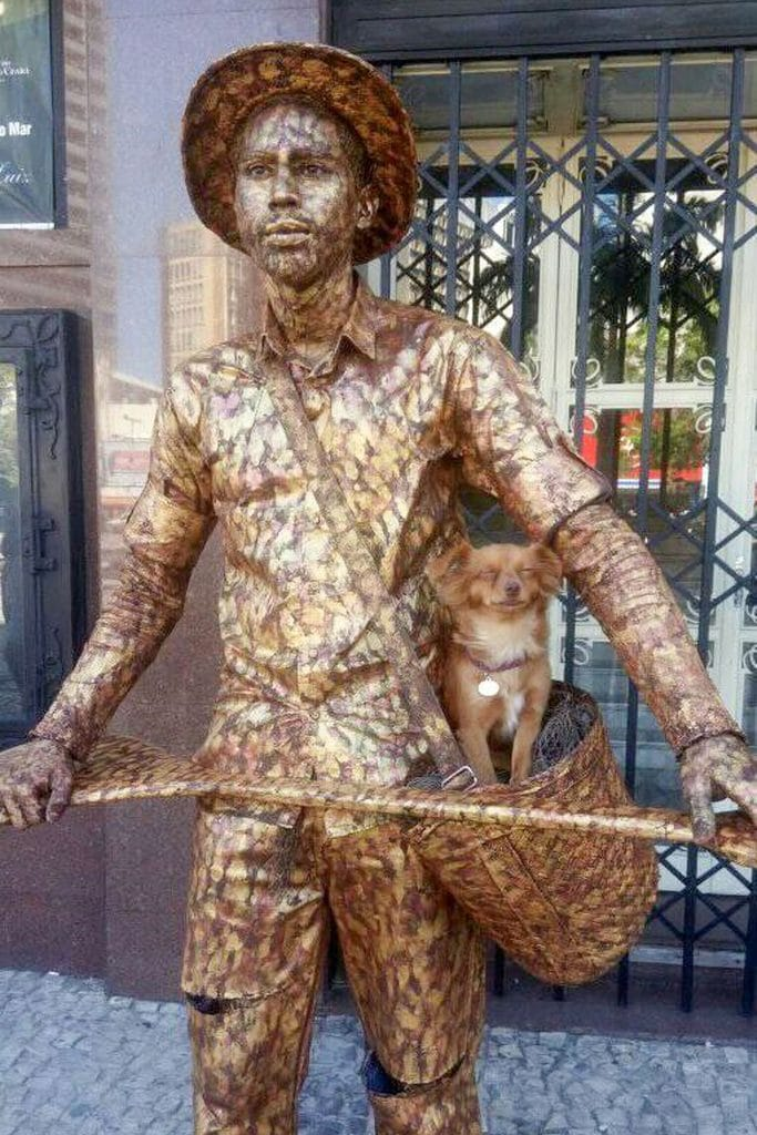 7_caters_street_dog_statue_8-683x1024