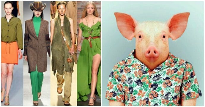 Стильная одежда для года Свиньи