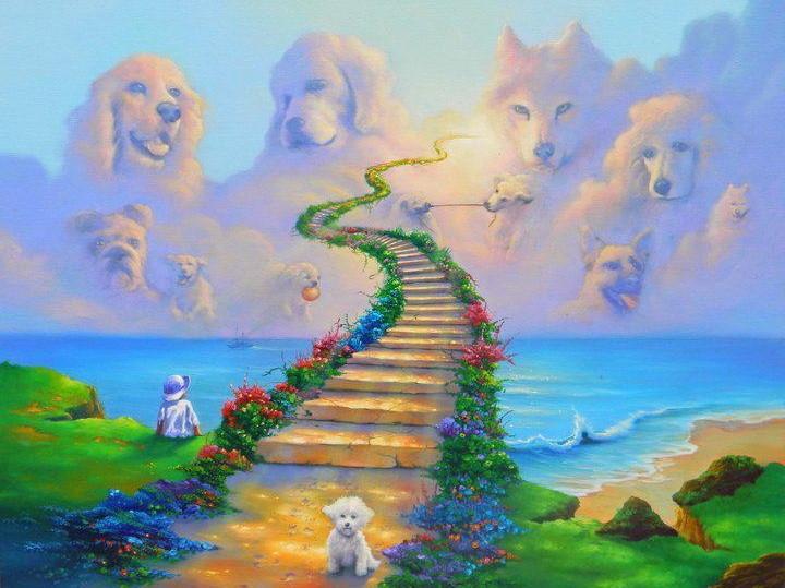 """""""Он появился в будке ниоткуда!"""" Белый щенок с заячьей губой: история для души рис 5"""