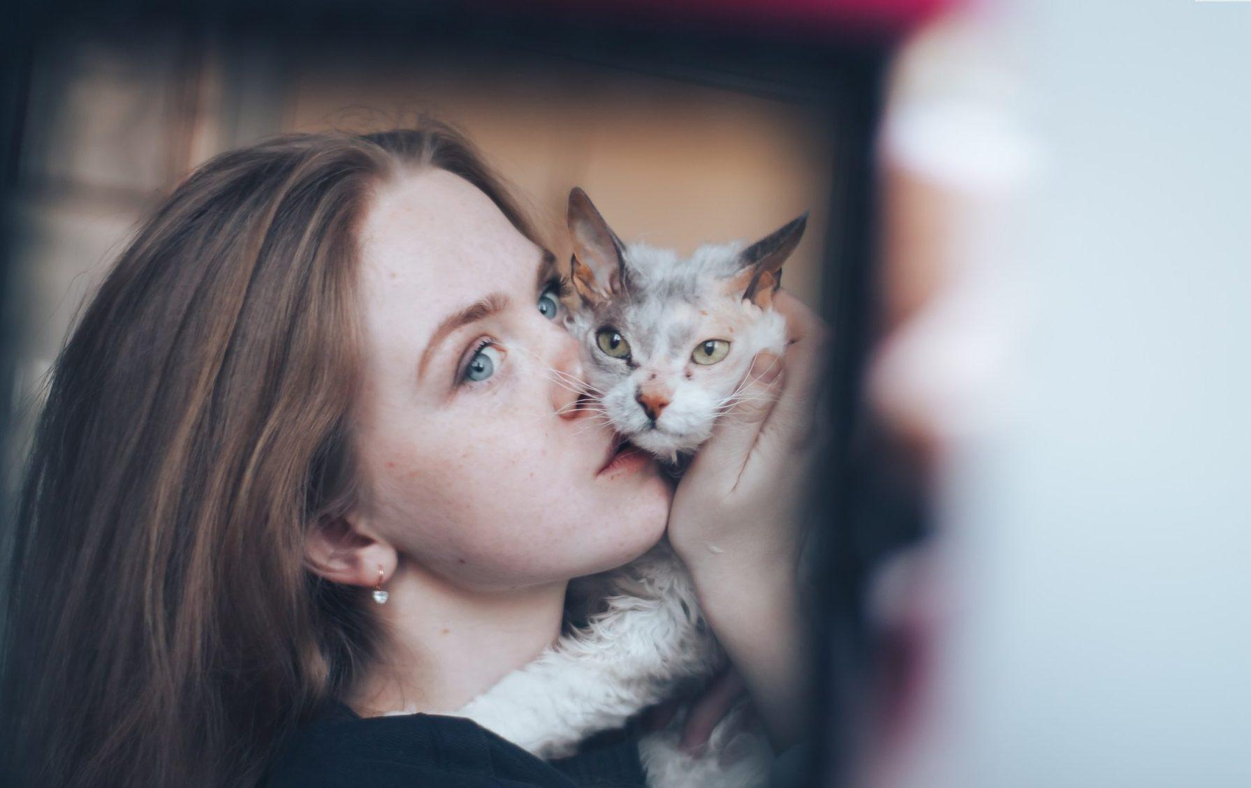 """""""Мы не знали о том, что нас ждёт!!!"""" Они случайно принесли домой дочь сфинкса и домашней кошки...) рис 13"""