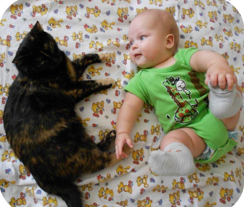 """""""Вода забулькала, поднялась - и из глубин туалета вылез котёнок!!! Я, беременная, разревелась..."""" рис 5"""