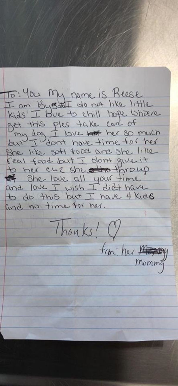 13-year-old-dog-dumped-on-lawn-with-a-sad-note-seeks-help-5afe46599d9f3__605