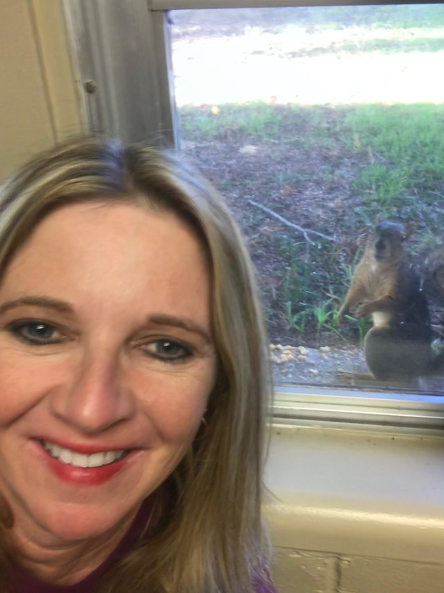 Белка без лапы несёт к окну своих малышей... В благодарность за чудесный поступок девушки!