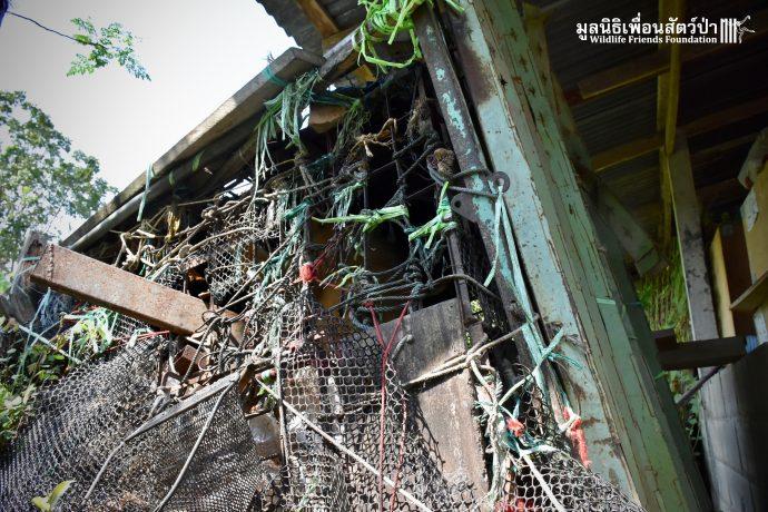 Золотистый ребёнок жил в мешке мусора 10 лет! Его владельцы вызвали спасателей от отчаяния... рис 3