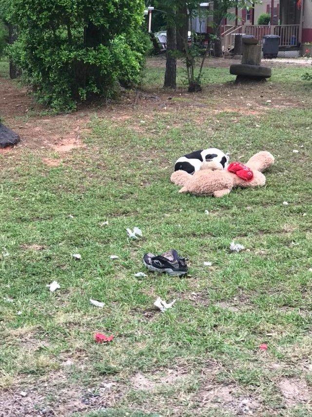 Уличный пёс обнимал плюшевого мишку... Он не двигался - и волонтер поняла, что опоздала! рис 3