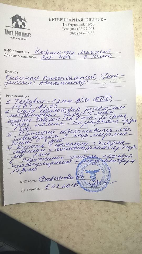В Киеве выбросили замерзать на улицу слепого старичка Биги... рис 6