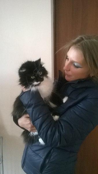 """""""Она замыкала кошек в мультиварке..."""" Строптивая Белладонна: 3 предательства и 1 любовь! рис 5"""