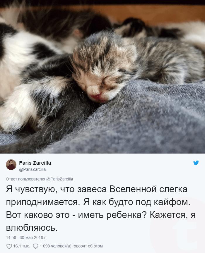 bez-nazvaniya-3 (1)