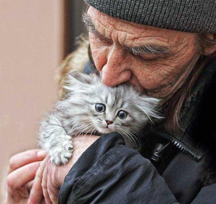 Могут ли бомжи любить котят? История Шопена, красивого мальчика в белых перчатках рис 10