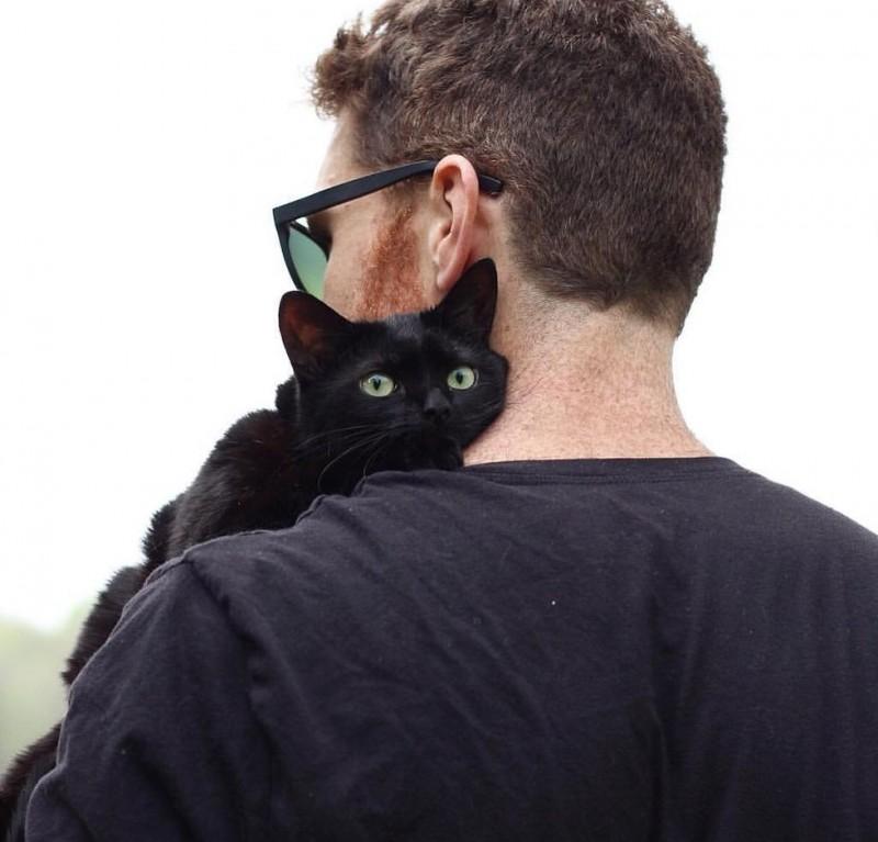 мужчина и кот рис 2