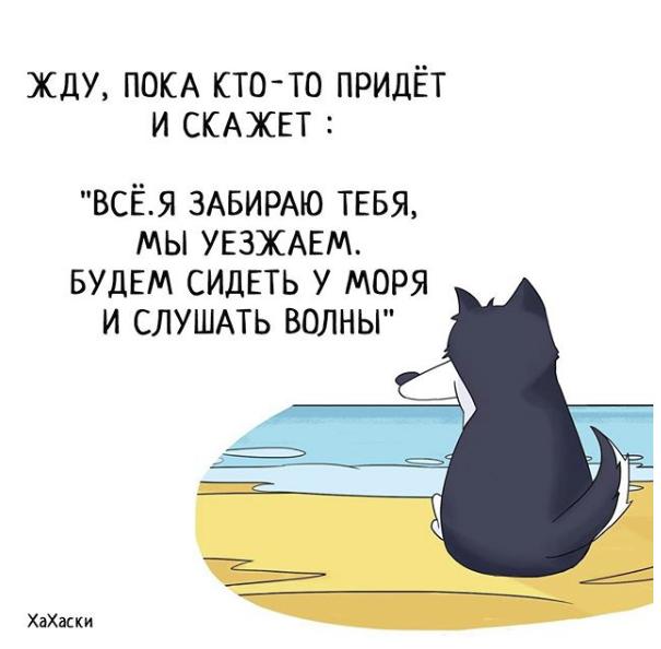 """""""Хаски - это ты!"""" 100% юмора, где каждый узнает свою жизнь. + История о настоящем хаски и котятах! рис 9"""