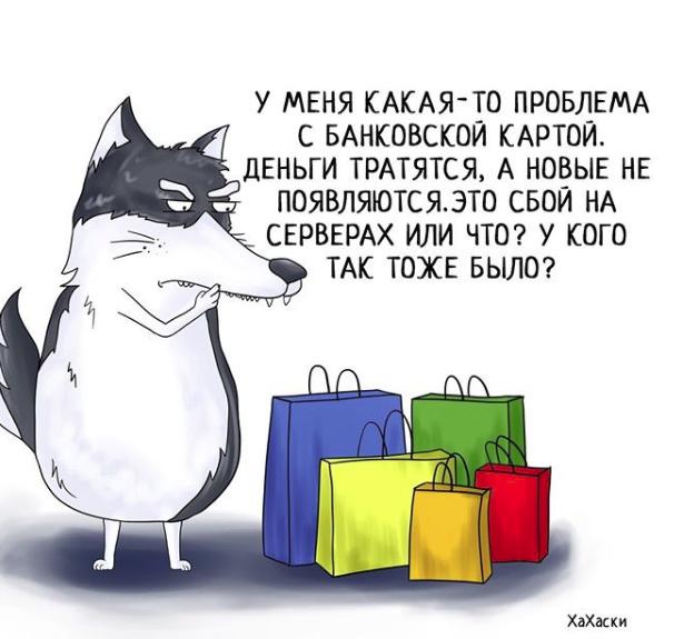 """""""Хаски - это ты!"""" 100% юмора, где каждый узнает свою жизнь. + История о настоящем хаски и котятах! рис 4"""