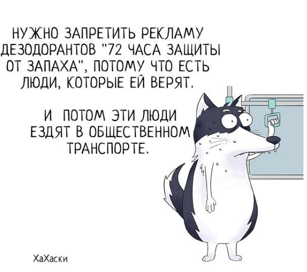 """""""Хаски - это ты!"""" 100% юмора, где каждый узнает свою жизнь. + История о настоящем хаски и котятах! рис 15"""