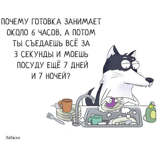 """""""Хаски - это ты!"""" 100% юмора, где каждый узнает свою жизнь. + История о настоящем хаски и котятах! рис 20"""