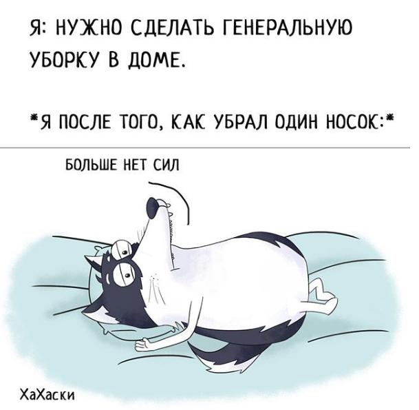 """""""Хаски - это ты!"""" 100% юмора, где каждый узнает свою жизнь. + История о настоящем хаски и котятах! рис 19"""