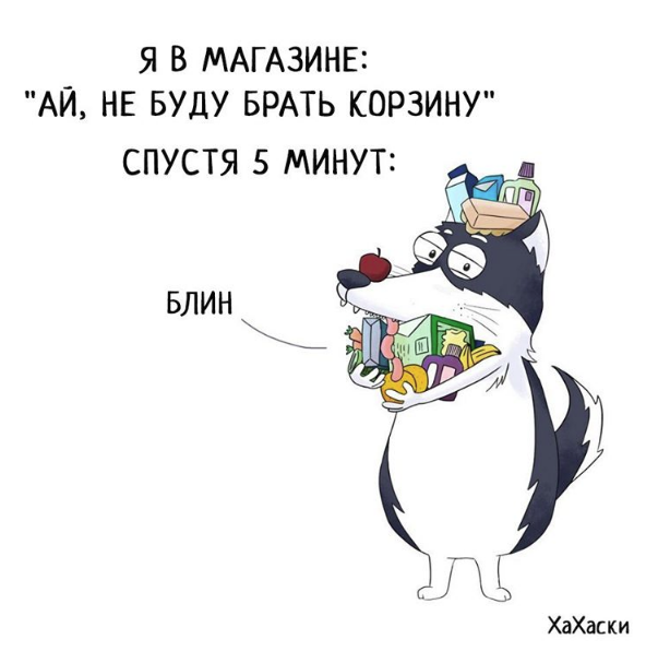 """""""Хаски - это ты!"""" 100% юмора, где каждый узнает свою жизнь. + История о настоящем хаски и котятах! рис 18"""