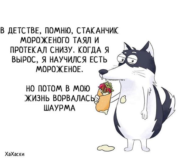 """""""Хаски - это ты!"""" 100% юмора, где каждый узнает свою жизнь. + История о настоящем хаски и котятах! рис 17"""
