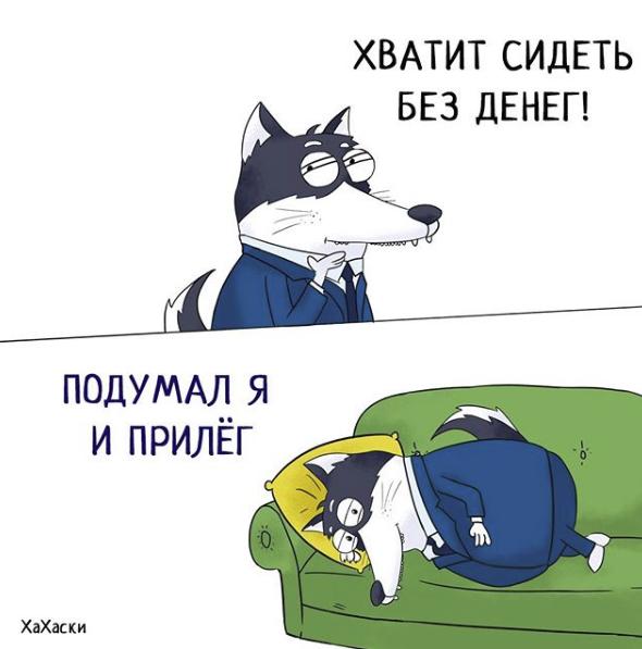 """""""Хаски - это ты!"""" 100% юмора, где каждый узнает свою жизнь. + История о настоящем хаски и котятах! рис 24"""