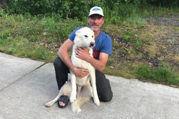 Хаски дважды спас глухую девушку, упавшую в реку на Аляске! Умный пёс, одно восхищение...) рис 8