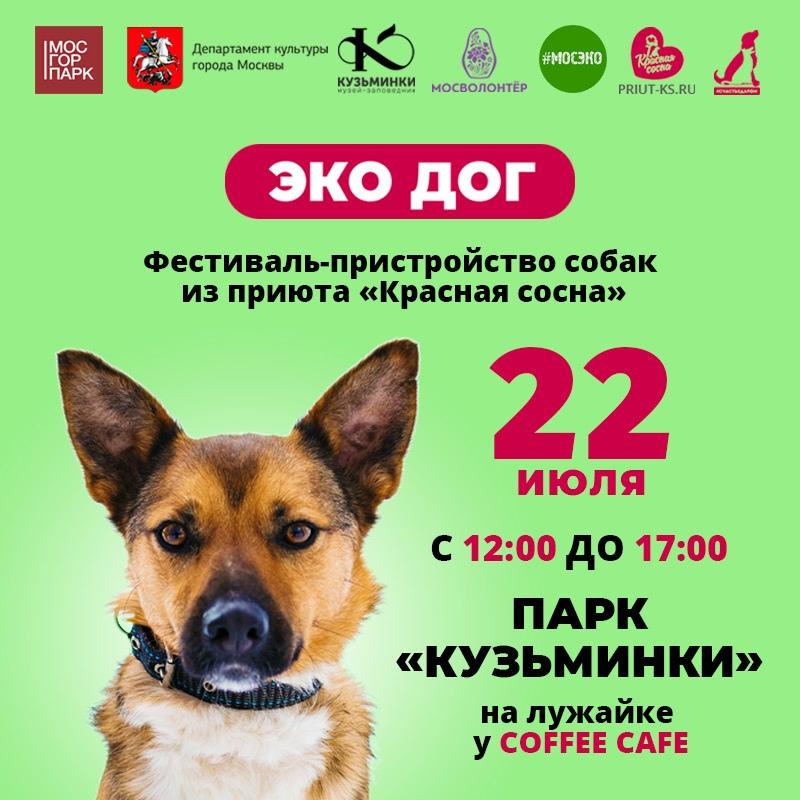 Фестиваль-пристройство собак из приюта «Красная Сосна»! Ждём всех в парке 22 июля :)