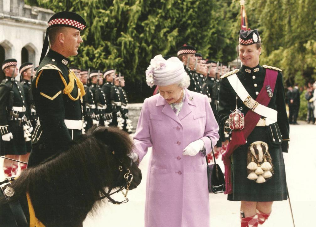 королева Британии гладит лошадь
