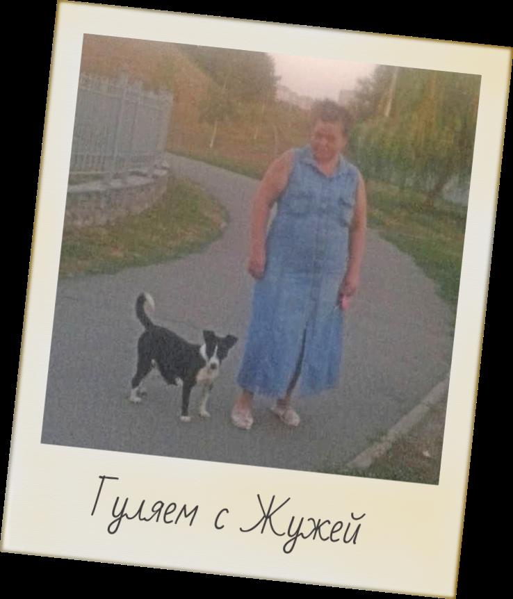женщина и пес на прогулке