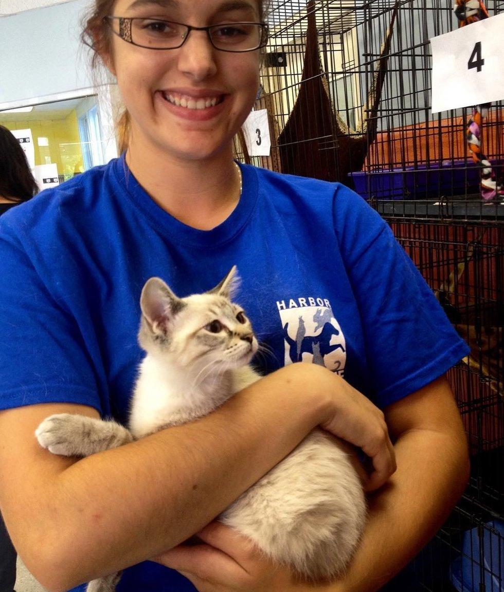 девушка держит кота на руках